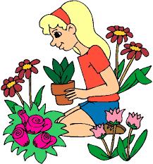cvijeće | GRDELIN BUZET